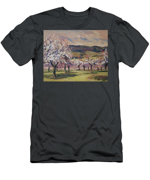 Apple Blossom Geuldal Men's T-Shirt (Athletic Fit)