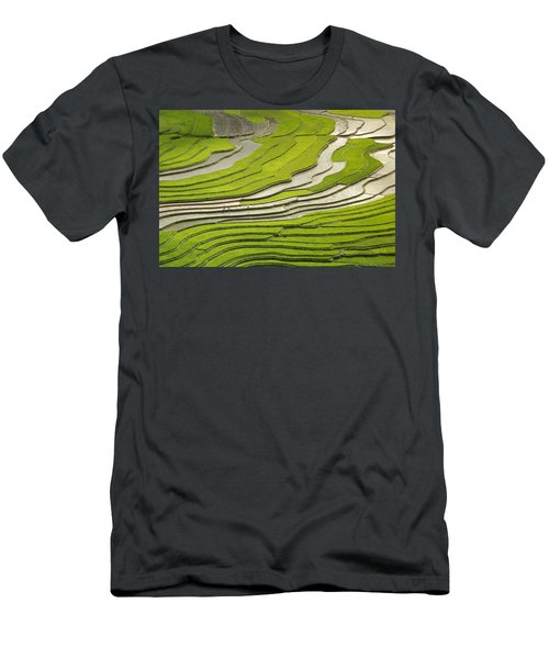 Asian Rice Field Men's T-Shirt (Athletic Fit)