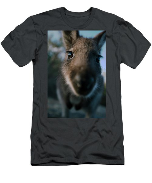 Australian Bush Wallaby Outside During The Day. Men's T-Shirt (Athletic Fit)
