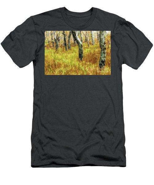 Autumn At Craggy Gardens Ap Men's T-Shirt (Athletic Fit)