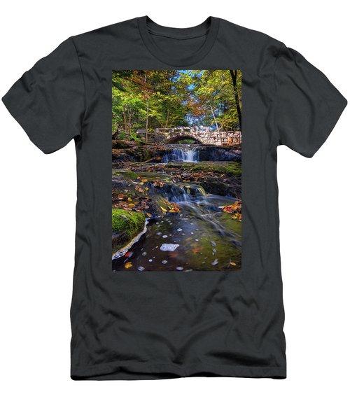 Autumn At Vaughan Brook Men's T-Shirt (Athletic Fit)