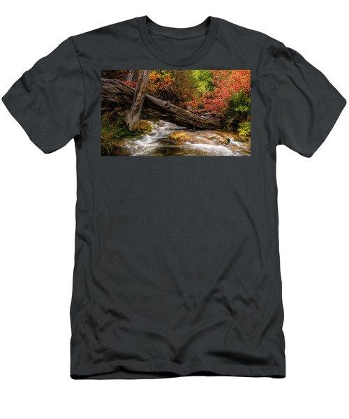Autumn Dogwoods Men's T-Shirt (Athletic Fit)