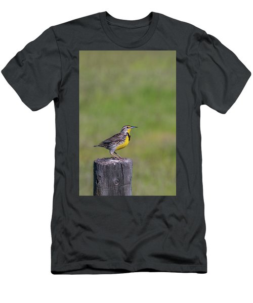 Men's T-Shirt (Athletic Fit) featuring the photograph B39 by Joshua Able's Wildlife