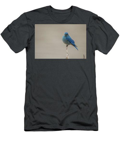 B52 Men's T-Shirt (Athletic Fit)