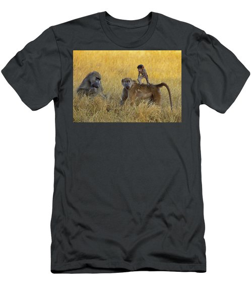 Baboons In Botswana Men's T-Shirt (Athletic Fit)