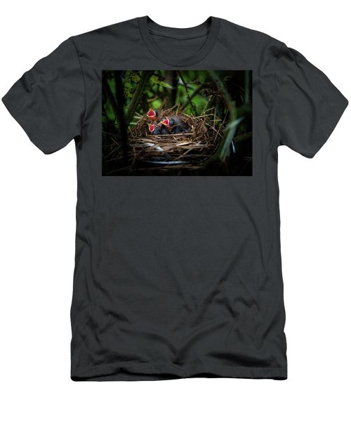 Baby Birds Men's T-Shirt (Athletic Fit)