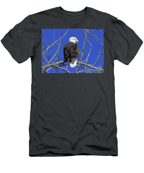 Bald Eagle And Blue Sky Men's T-Shirt (Athletic Fit)