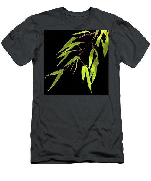 Bamboo Leaves 0580a Men's T-Shirt (Athletic Fit)