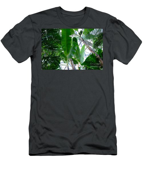 Banana Leaves In The Greenhouse Men's T-Shirt (Athletic Fit)