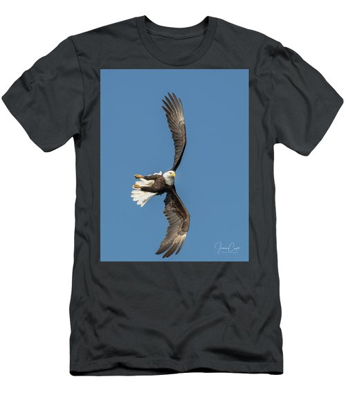 Banking Bald Eagle Men's T-Shirt (Athletic Fit)