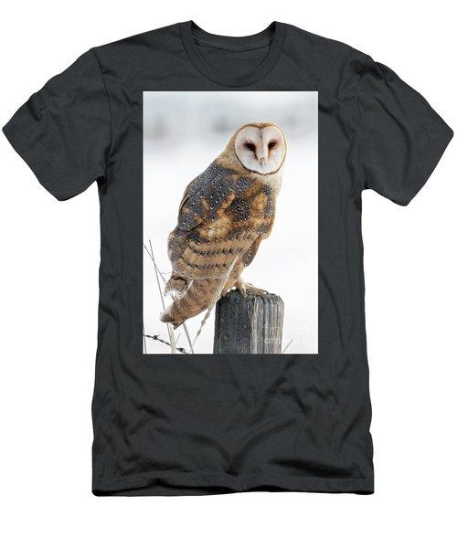 Barn Owl Portrait Men's T-Shirt (Athletic Fit)