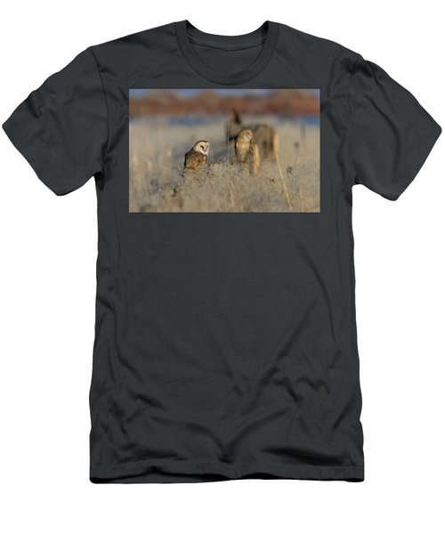Barn Owls 9 Men's T-Shirt (Athletic Fit)