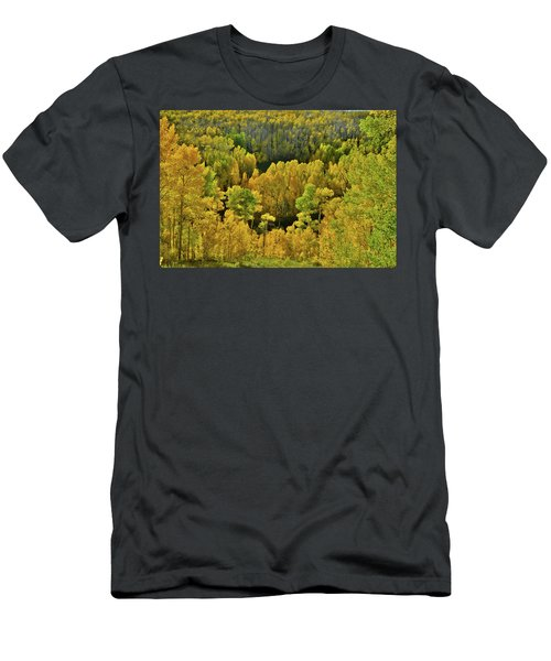 Beautiful Fall Colors At Woods Lake State Wildlife Area Men's T-Shirt (Athletic Fit)
