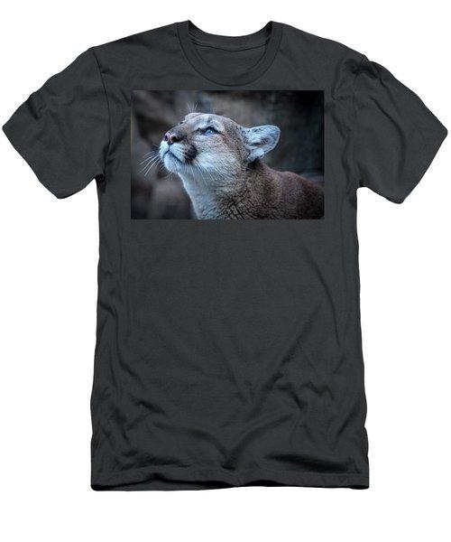 Beautiful Puma Men's T-Shirt (Athletic Fit)