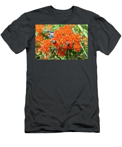 Bees Men's T-Shirt (Athletic Fit)