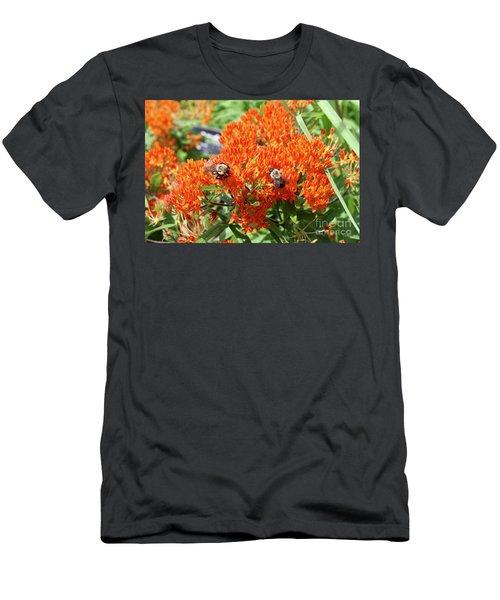 Bees Men's T-Shirt (Athletic Fit)