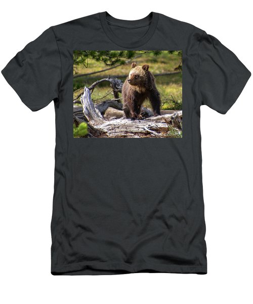 Better View From Here Men's T-Shirt (Athletic Fit)