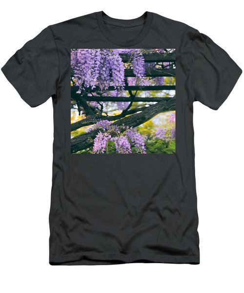 Wisteria Draped Trellis  Men's T-Shirt (Athletic Fit)