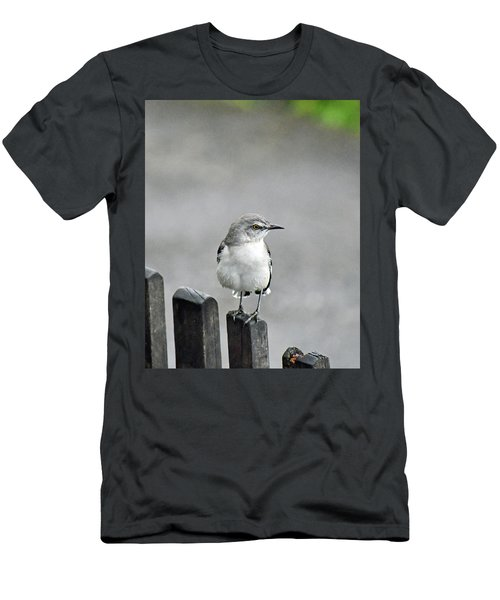 Bird Of Strawberry Hill Men's T-Shirt (Athletic Fit)