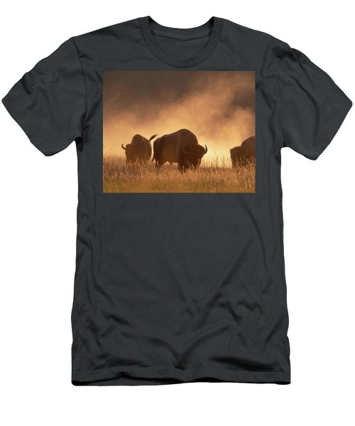 Bison In The Dust Men's T-Shirt (Athletic Fit)