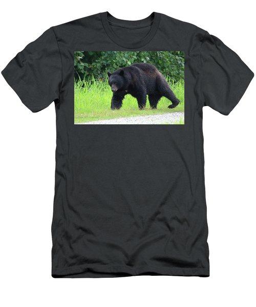 Black Bear Crossing Men's T-Shirt (Athletic Fit)