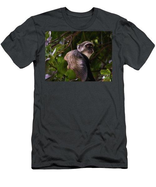 Blue Monkey, Zanzibar Men's T-Shirt (Athletic Fit)