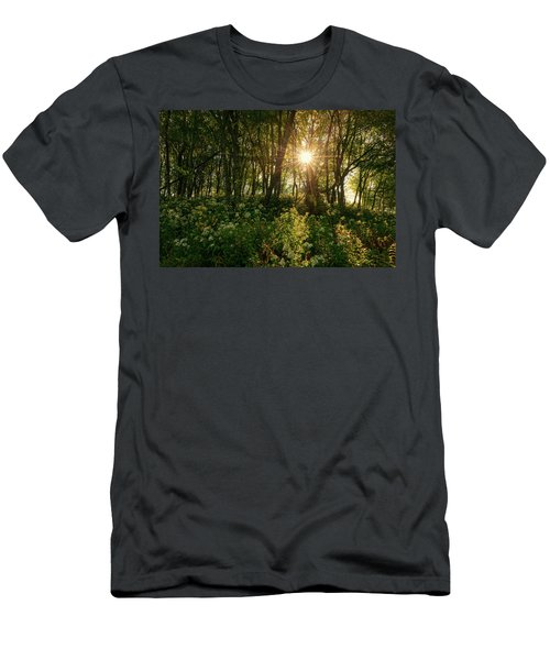 Blue Ridge Parkway - Last Of Summers Light, North Carolina Men's T-Shirt (Athletic Fit)
