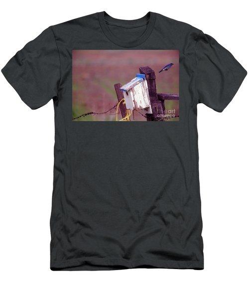 Bluebird In Flight Men's T-Shirt (Athletic Fit)