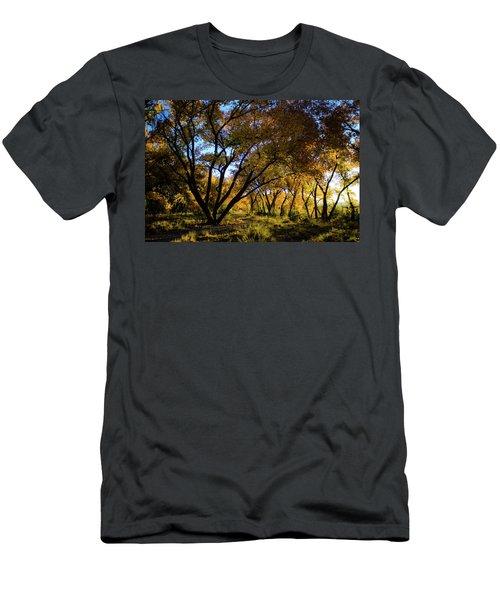 Bosque Color Men's T-Shirt (Athletic Fit)