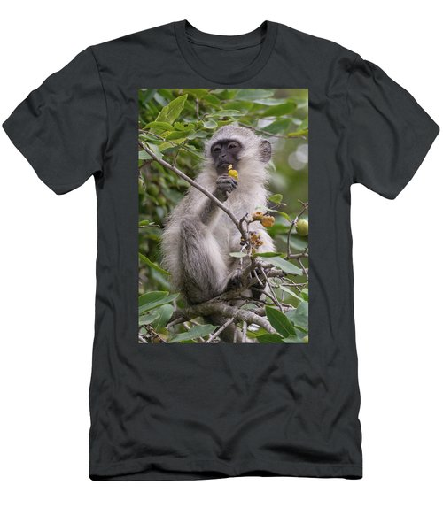Breakfasting Monkey Men's T-Shirt (Athletic Fit)