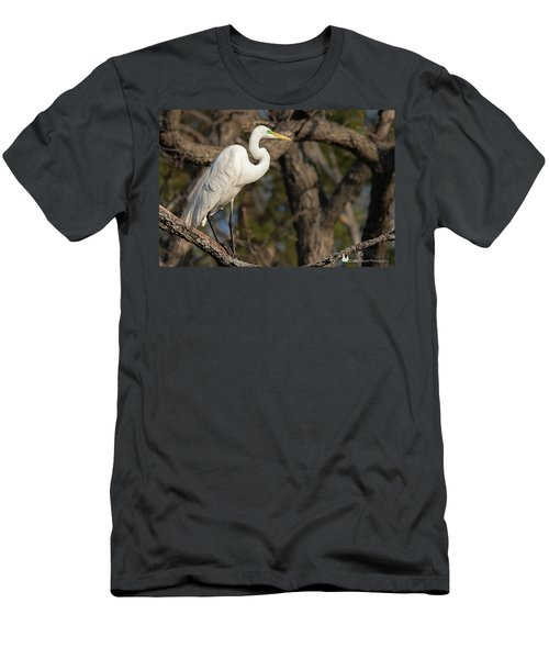 Bright White Heron Men's T-Shirt (Athletic Fit)