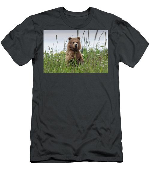 Brown Bear Cub In A Meadow Men's T-Shirt (Athletic Fit)