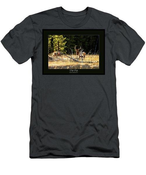 Bull Elk Men's T-Shirt (Athletic Fit)