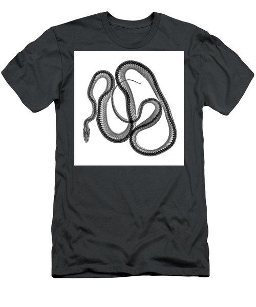 C025/8521 Men's T-Shirt (Athletic Fit)