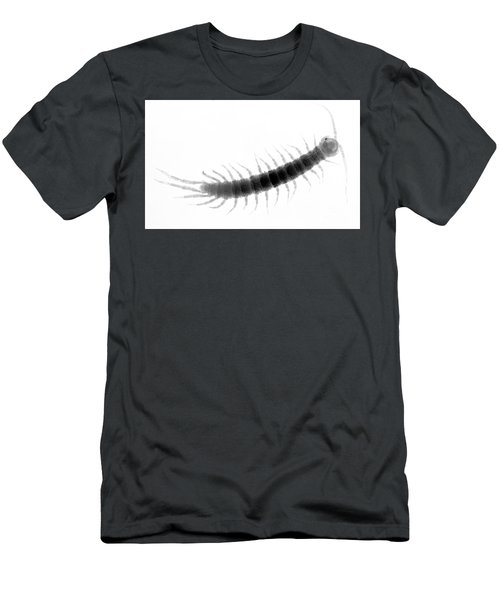 C027/0097 Men's T-Shirt (Athletic Fit)