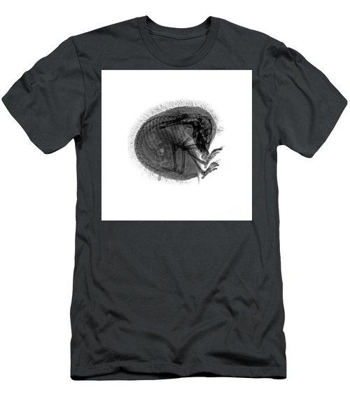 C037/9601 Men's T-Shirt (Athletic Fit)