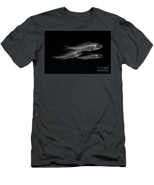 C038/4738 Men's T-Shirt (Athletic Fit)