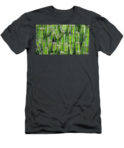 Cacti Wall Men's T-Shirt (Athletic Fit)