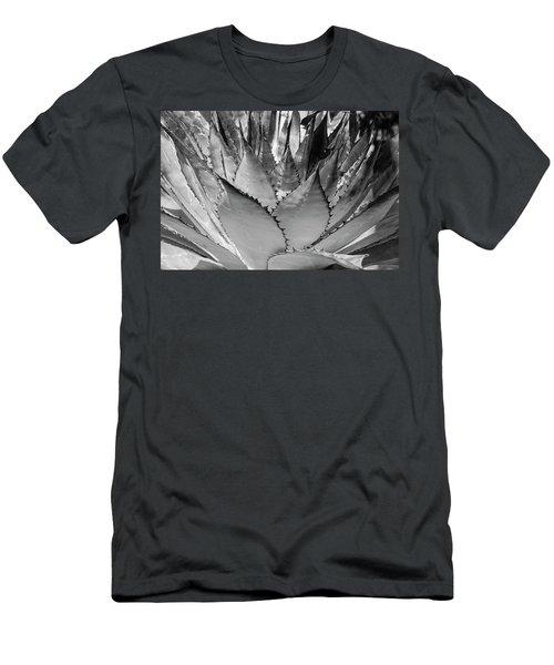 Cactus 3 Men's T-Shirt (Athletic Fit)