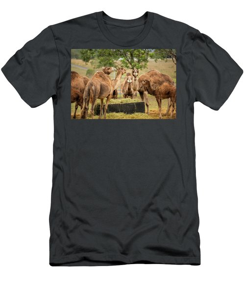 Men's T-Shirt (Athletic Fit) featuring the photograph Camels Out Amongst Nature by Rob D Imagery