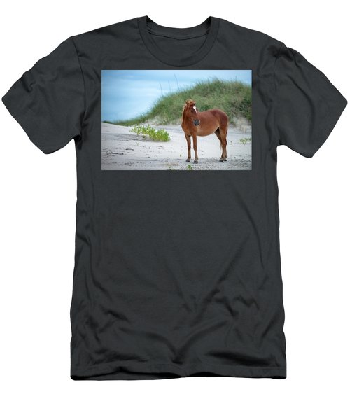 Carova Wild Horses - Colonial Spanish Mustangs Men's T-Shirt (Athletic Fit)