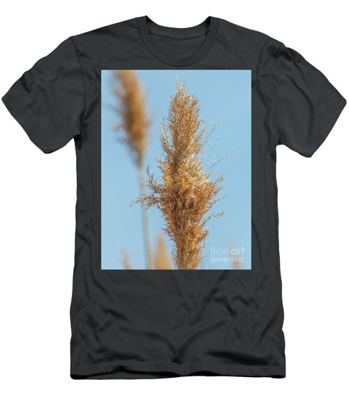 Cattail  Men's T-Shirt (Athletic Fit)