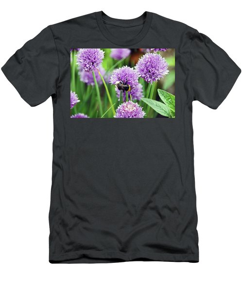 Chorley. Picnic In The Park. Bee In The Chives. Men's T-Shirt (Athletic Fit)