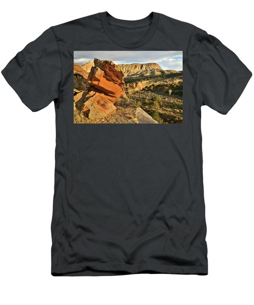 Cliffside Rock Cropping In Colorado National Monument Men's T-Shirt (Athletic Fit)