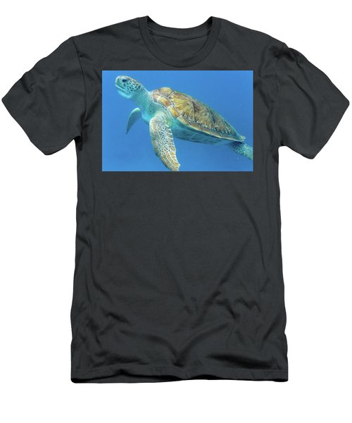 Close Up Sea Turtle Men's T-Shirt (Athletic Fit)
