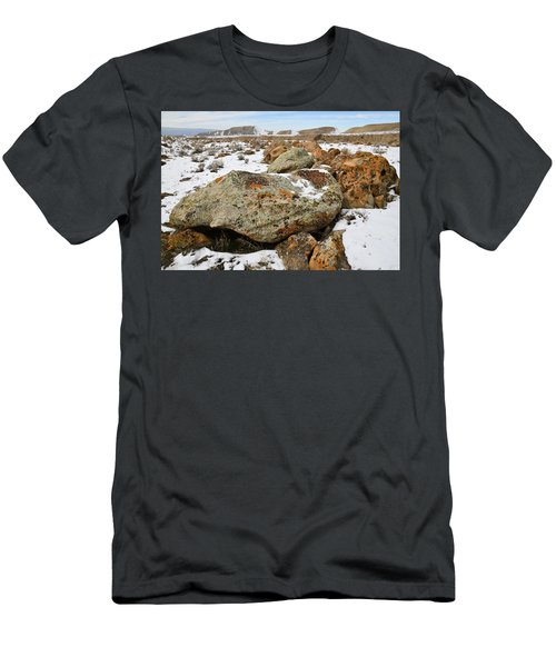 Color In The Book Cliff Desert Men's T-Shirt (Athletic Fit)