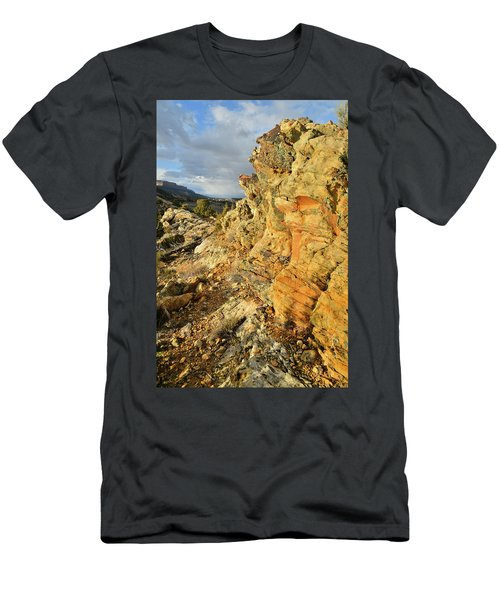 Colorful Entrance To Colorado National Monument Men's T-Shirt (Athletic Fit)