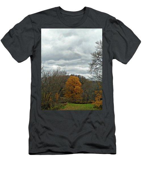 Colourful Point Men's T-Shirt (Athletic Fit)