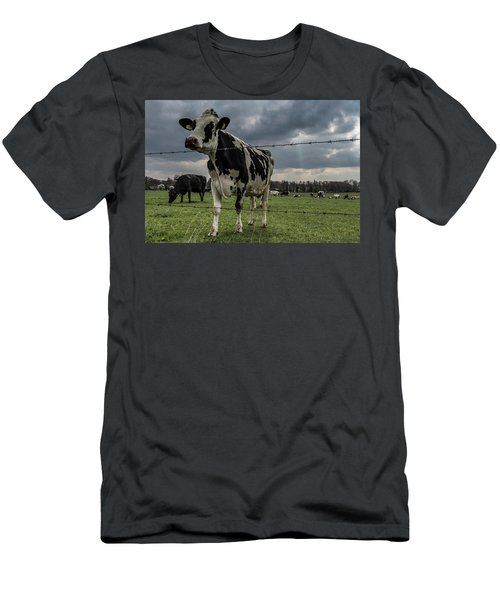 Men's T-Shirt (Athletic Fit) featuring the photograph Cows Landscape. by Anjo Ten Kate