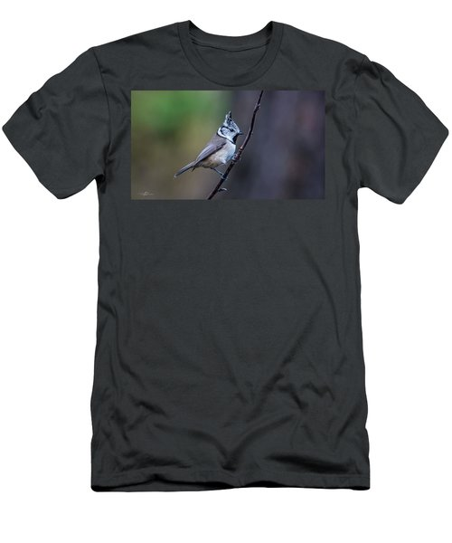Crested Tit On A Twig Men's T-Shirt (Athletic Fit)